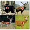 Shooting targets, Hunting targets, 14 cm, 100 pcs